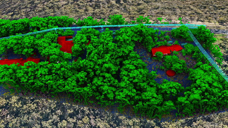 Lidar with trees.png