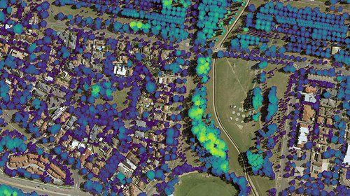 Urban Tree Canopy Management and LIDAR